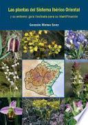 libro Las Plantas Del Sistema Ibérico Oriental Y Su Entorno