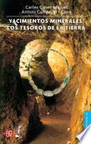 libro Yacimientos Minerales