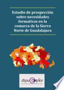 Estudio De Prospección Sobre Necesidades Formativas En La Comarca De La Sierra Norte De Guadalajara