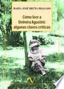 libro Cómo Leer A Delmira Agustini