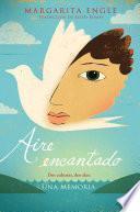 Aire Encantado (enchanted Air)