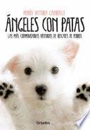Ángeles Con Patas