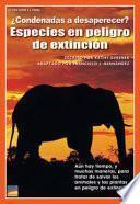 ¿condenadas A Desaparecer? Especies En Peligro De Extinción