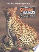 Diario Felinos: Leopardos