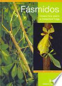 Fásmidos. Insectos Palo E Insectos Hoja