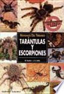 Manuales Del Terrario. Tarántulas Y Escorpiones