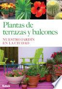 Plantas De Terrazas Y Balcones