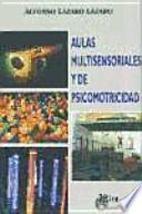 libro Aulas Multisensoriales Y De Psicomotricidad