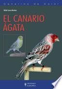 El Canario ágata