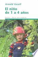 El Niño De 1 A 4 Años