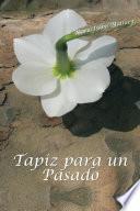 libro Tapiz Para Un Pasado