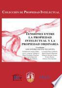 libro Tensiones Entre La Propiedad Intelectual Y La Propiedad Ordinaria