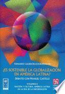 Es Sostenible La Globalización En América Latina?: Nación Y Cultura : América Latina En La Era De La Información