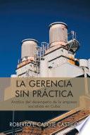 libro La Gerencia Sin PrÁctica