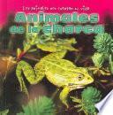 Animales De La Charca
