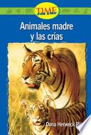 Animales Madre Y Las Crias / Animal Mothers And Babies