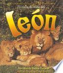 El Ciclo De Vida De Un León