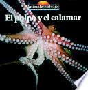 El Pulpo Y El Calamar