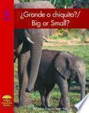 Grande O Chiquito?/big Or Small?