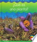 Que Es Una Planta?