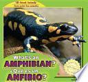 What S An Amphibian? / �qu_ Es Un Anfibio?
