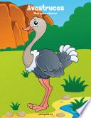 Avestruces Libro Para Colorear 1