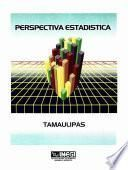 Perspectiva Estadística De Tamaulipas