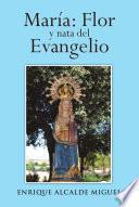 libro Maria: Flor Y Nata Del Evangelio