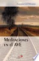 Meditaciones En El Ave