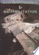 libro Dam Maintenance And Rehabilitation